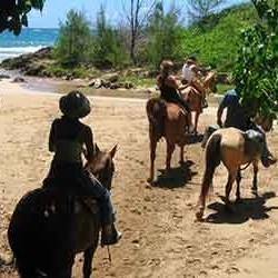 cjm-stables-kauai-horseback-riding-crossing-beach
