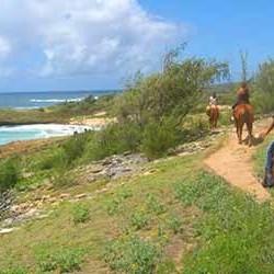 cjm-stables-kauai-horseback-riding-ocean-trail