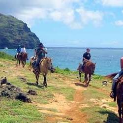 cjm-stables-kauai-horseback-riding-ocean-views
