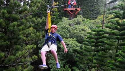 Zipline through trees