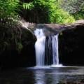 kohala-waterfall-tour-3