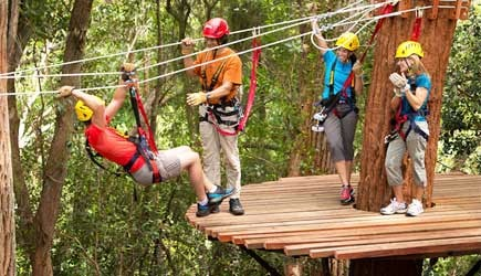 Adventureinhawaii big island zipline tours adventureinhawaii kohala zipline solutioingenieria Choice Image