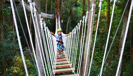 suspension bridge & AdventureInHawaii.com | Kohala Zipline - AdventureInHawaii.com