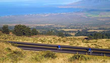 maui downhill bike tour