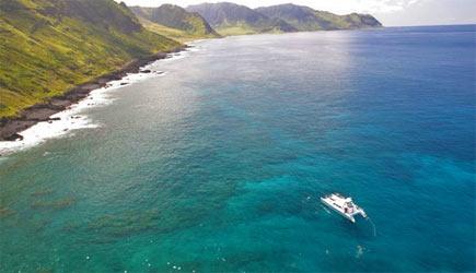 ocean joy snorkeling