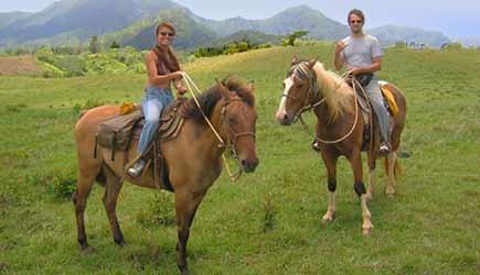 princeville ranch stables