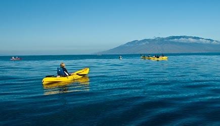 south-pacific-kayak-tours-maui-4
