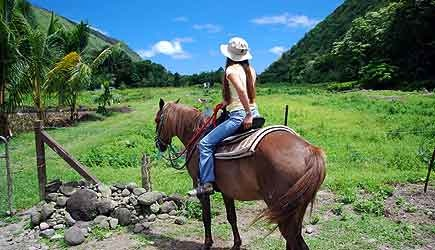 waipio valley horseback riding
