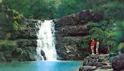 Lulumahu Waterfall Oahu Hike Trail Pond
