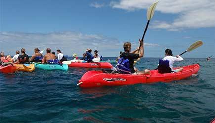 Kona Kayaks