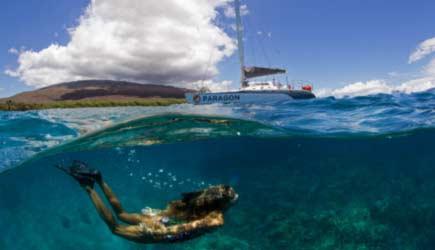 Paragon Snorekl Sail