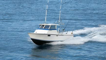 Maui fun charters for Maui fishing supply
