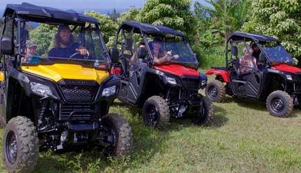 All About the View ATV Tours