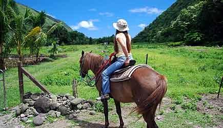 Waipio Valley Horseback Riding
